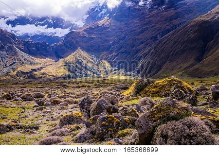 Mossy volcanic Andean landscape in afternoon light near El Altar volcano in Riobamba region, Ecuador