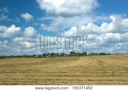 Rural summer landscape with mown field and a village at far