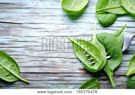 Fresh Baby spinach leaves skewered on a fork, blue wooden background. Top view with copy space, horizontal frame. Healthy, Ecology concept