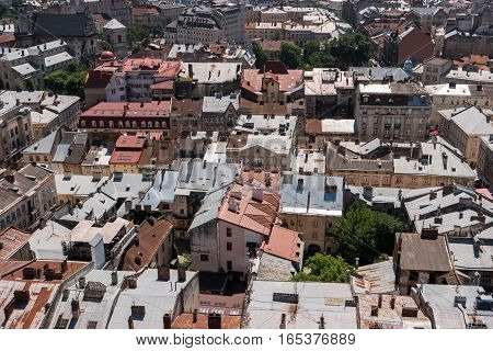 Top view of town. Green trees and rooftops. Historic landmarks and old streets.