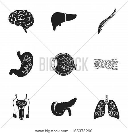 Organs set icons in black style. Big collection of organs vector symbol stock
