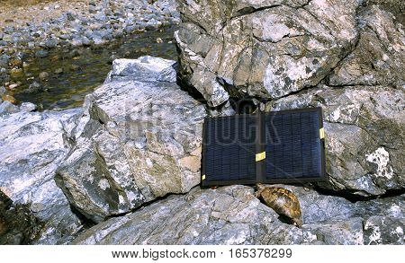 The solar panel is installed on the rocks near the turtle.