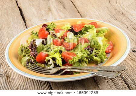 fresh summer salad with tomatoes and goat cheese on a plate