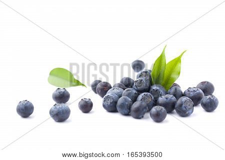 fresh blueberries isolated on the white background