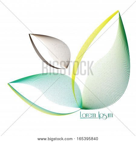 Isolated abstract nature business logo, Vector illustration