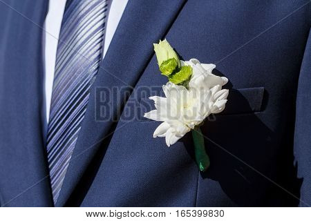 blue suit and groom boutonniere of white chrysanthemums