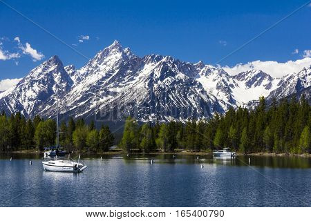 Mt. Moran At The Grand Teton National Park, Wyoming