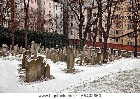 Prague Czech Republic - January 16 2017: Snowy Jewish Cemetery in Prague in winter