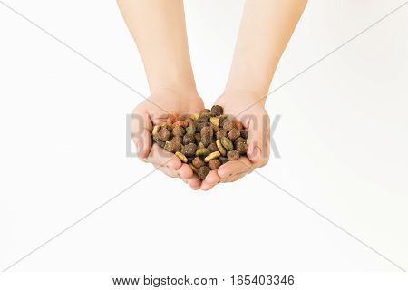 Hands Full Of Dry Dog Food On White Background