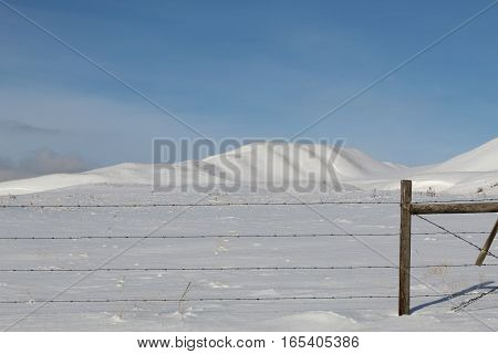 Winter landscape with snow covered hill, dune and desolate field. Bright clear blue sky and isolated white cloud over hill top.  Wire fence and post in foreground.