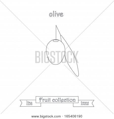 Line olive icon, fruit icon collection stock vector illustration