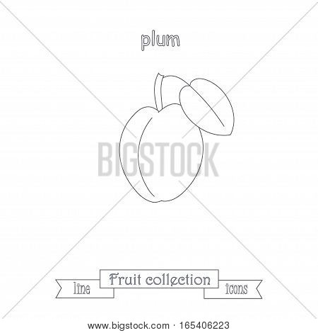 Line plum icon, fruit icon collection stock vector illustration