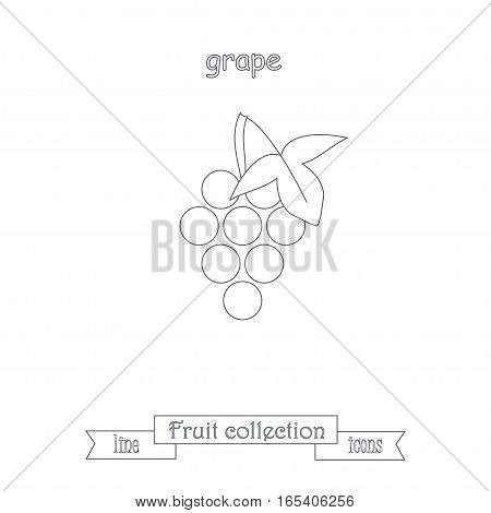 Line grape icon, fruit icon collection stock vector illustration