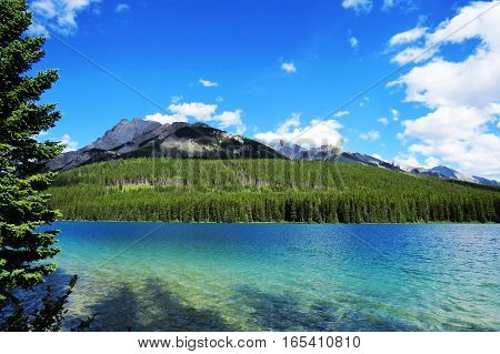 A part of a crystal clear lake surrounded by nature and a mountain in Banff National Park.  Banff, Alberta, Canada.