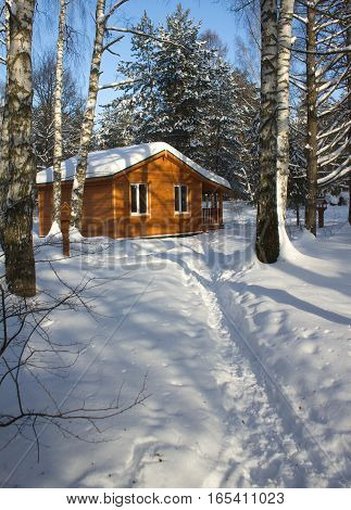 Brown wooden house in winter forest on white snow under clear blue sky vertical view