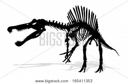 Silhouette of the ancient skeleton of a large dinosaur.