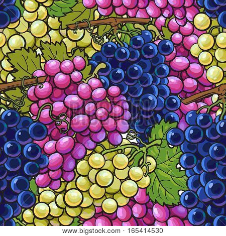 Seamless pattern with bunches of white, green, purple grapes, sketch style vector illustration. Hand drawn seamless pattern, background, wrapping paper design with ripe juicy grapes