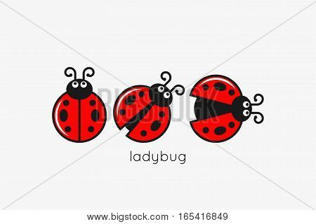 Ladybug Logo Set On White Design Background 8 eps