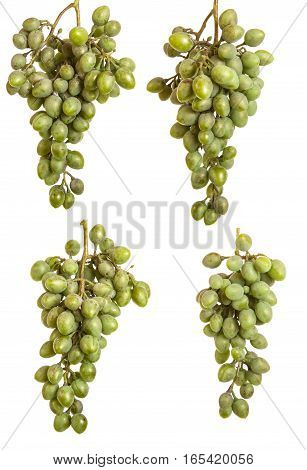 Bunch Of Unripe Green Grapes. Isolated On White Background