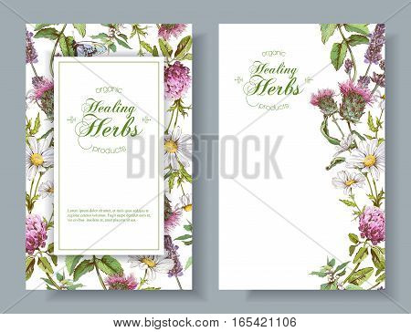 Vector vertical wild flowers and herbs banners. Design for herbal tea, natural cosmetics, honey, perfume, health care products, homeopathy, aromatherapy. With place for text