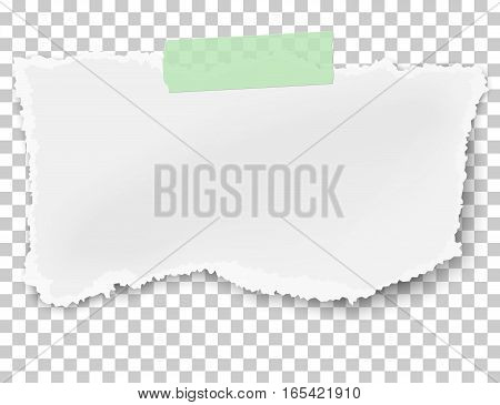 Vector rectangular ragged paper wisp with soft shadow placed on green adhesive sticky tape on transparent checkered background
