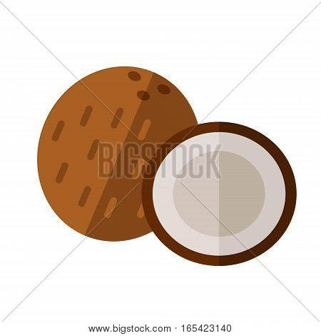 Coconut Drupe With Half Section Vector Illustration. Superfood Cocoanut Icon. Healthy Detox Natural