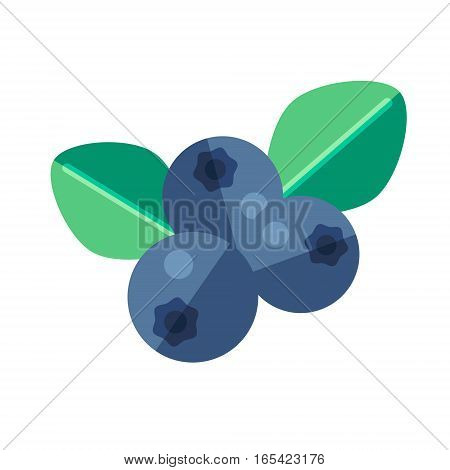 Noni Fruit And Leaves Vector Illustration. Superfood Morinda Citrifolia Icon. Healthy Detox Natural
