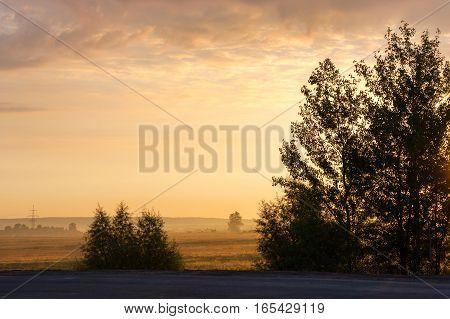Misty Dawn Summer Morning