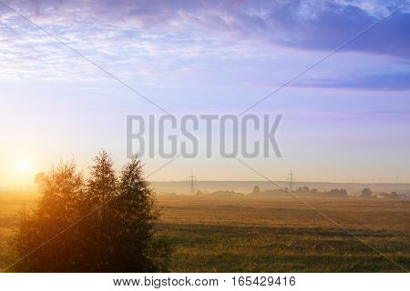 Misty dawn on early summer morning in village. Fresh morning air and fog creeps over field and pasture. Rural landscape in warm tones without people