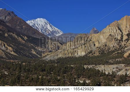 Scenery near Manang Annapurna Conservation Area. Forest limestone formations and snow capped mount Tilicho Peak.