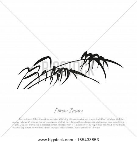 Black silhouette of reed on a white background. Vector illustration