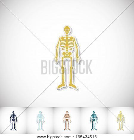 Human skeleton. Flat sticker with shadow on white background. Vector illustration
