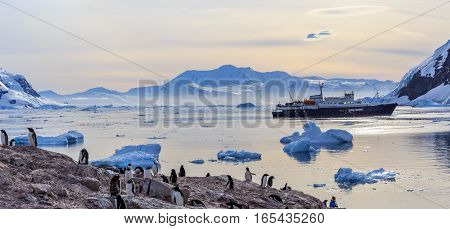 Antarctic Cruise Ship Among Icebergs And Gentoo Penguins Gathered On The Shore Of Neco Bay, Antarcti