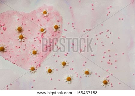 Heart painted with watercolors and fresh chamomile. Scattered pink beads. Space for header text. Concept of love romance tenderness Valentines day.
