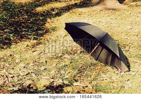 Black umbrella on autumn foliage in park.