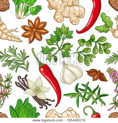 Vector hot seamless pattern with spices and herbs. Decorative colorful composition on white background
