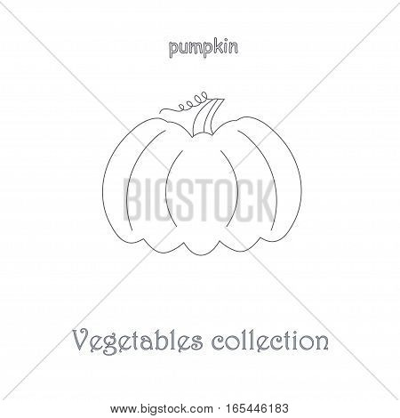Line pumpkin icon, vegetables icon collection stock vector illustration