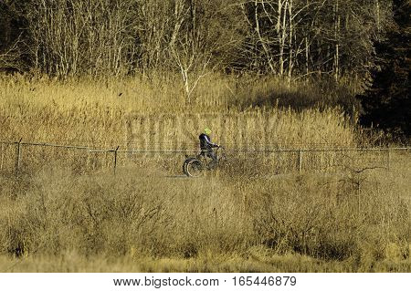 Fairhaven Massachusetts USA - March 18 2016: Man riding three-wheeler along Phoenix Bike Trail in late winter
