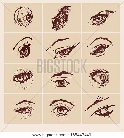 Set of female eyes and brows. Vector illustration in ink hand drawn comics style. Different emotions