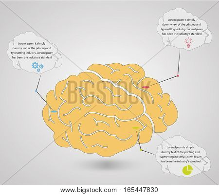 Infographic  Brain Infographic elements concept. Time line stage. Various business infographic elements. Creative elements. Vector infographic elements. Creative business concept of stage, parts, steps. Business infographic elements. Infographics template