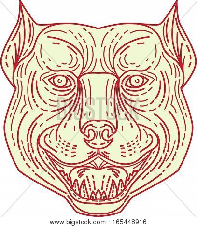 Mono line style illustration of an angry pitbull dog mongrel head facing front set on isolated white background.