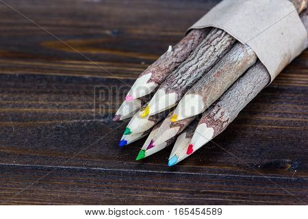 Set Of Wood Color Pencil From Tree Branch