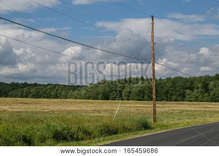 A wooden electric pole with the wires standing on the edge of a field by a road.