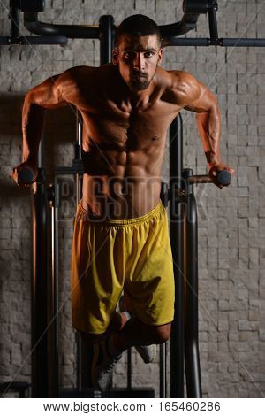 Triceps And Chest Exercise On Parallel Bars