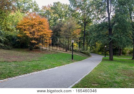 Early autumn in Central Park, NYC .