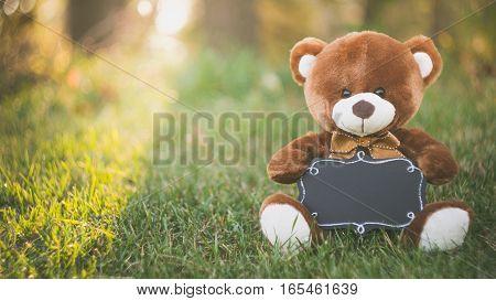 teddy bear with black board sitting on grass field in autumn season