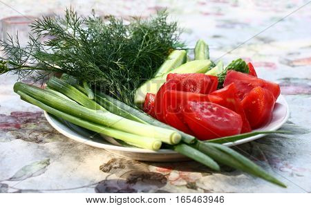 On a table there is a plate. On a plate the green onions, fennel, slices of a cucumber and slices red a tomato lie.