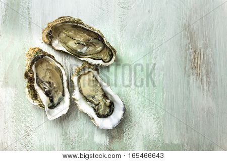 A photo of freshly opened oysters on a wooden background texture with copyspace