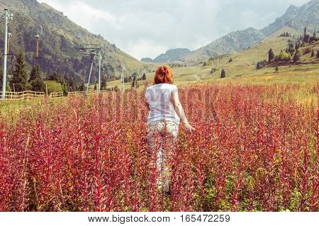 Aged Woman Are Going Through Red Plants To The Mountains, Tien Shan Mountains Shymbulak Ski Resort,