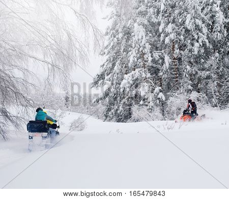 Man on snowmobile in winter forest mountain